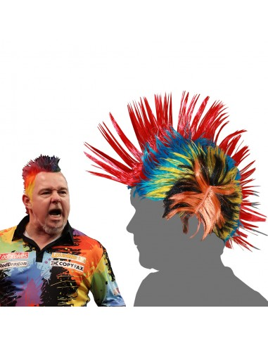 Peter Wright Wig
